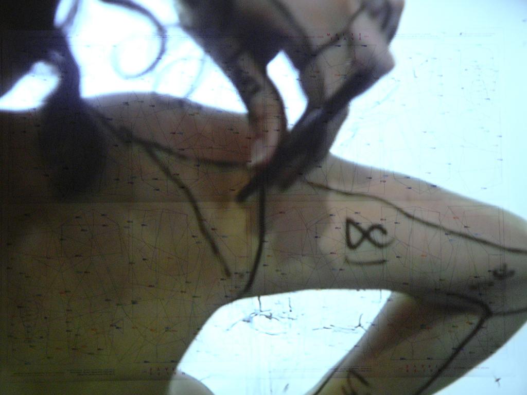 FRACCIÓN | 2009 | Videoinstalación | 25´