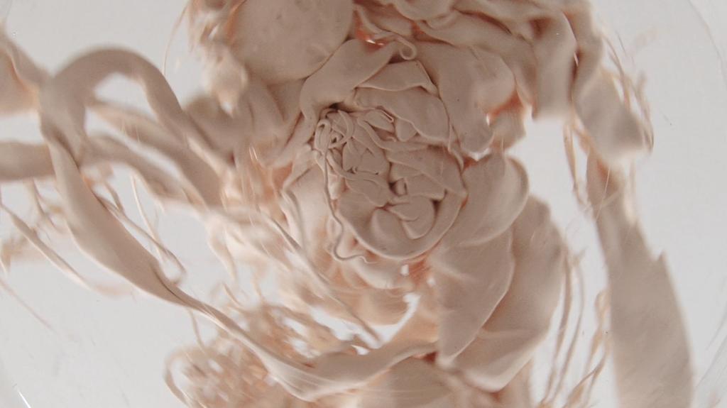 INSIDE | 2013 | Videoecografía | 3´